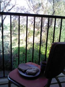 Frühstück auf Balkon mit tollem Ausblick auf von Morgensonne beschienene Bäume