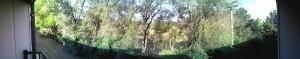 Das ist meine Aussicht vom Balkon aus.